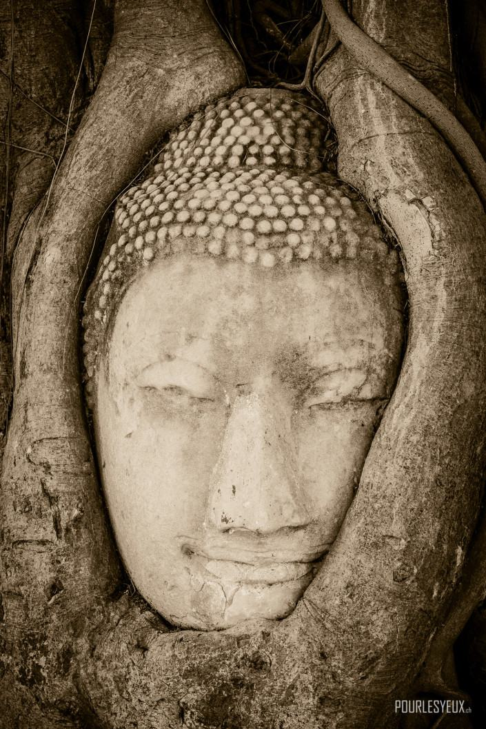 photographe geneve thailande bouddha portrait